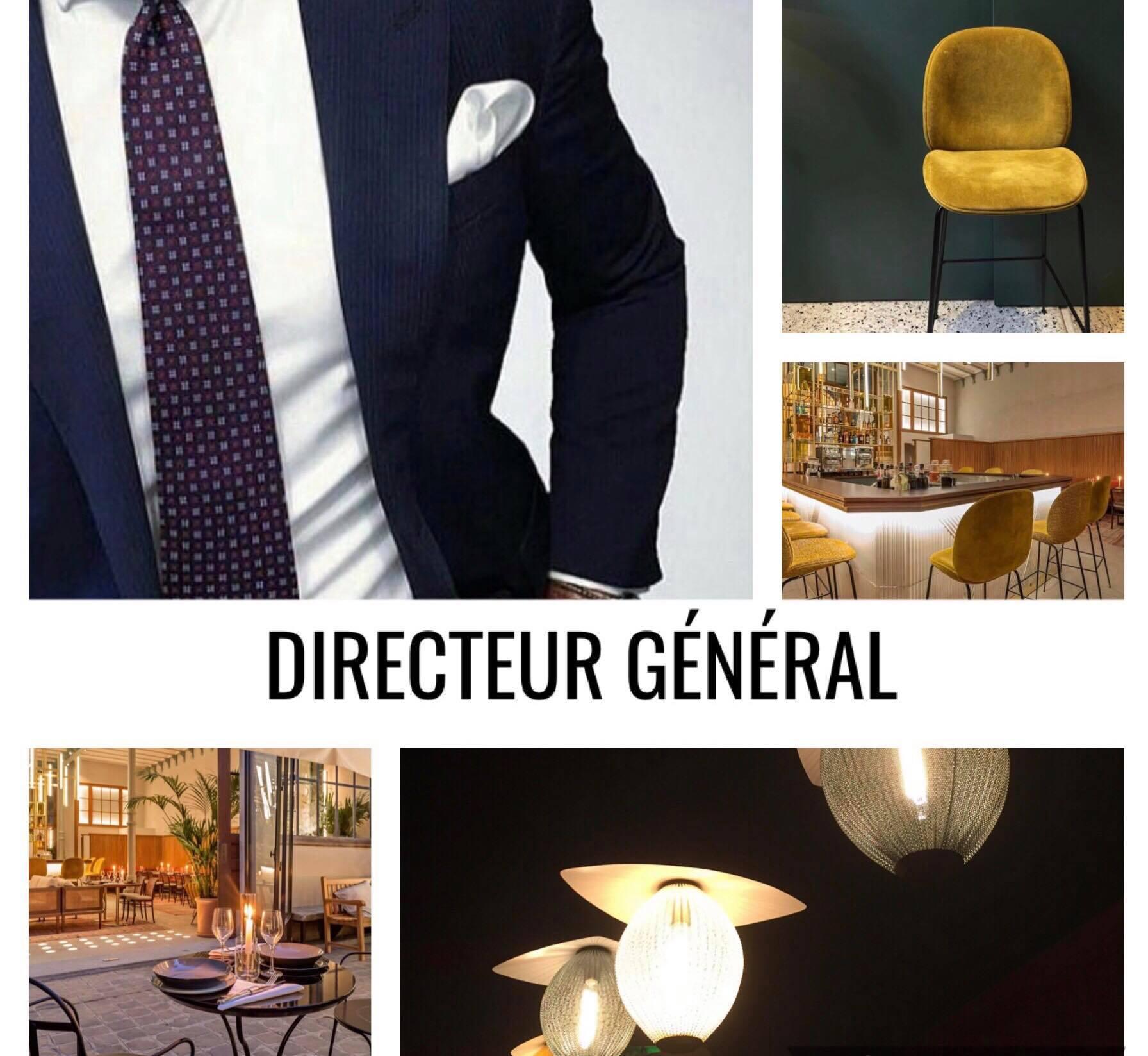 directeur g n ral archives rhea recrutement. Black Bedroom Furniture Sets. Home Design Ideas